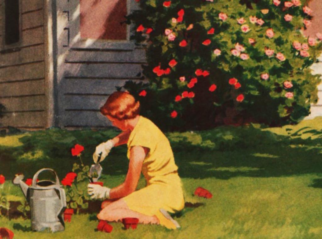 Copia di suburbs-gardening-lawns